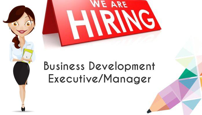 Business Development Seo Job In Patna Sales Executive